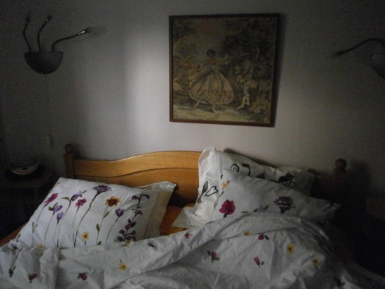 Bed and Breakfast de Witte Reiger - Muzikamer